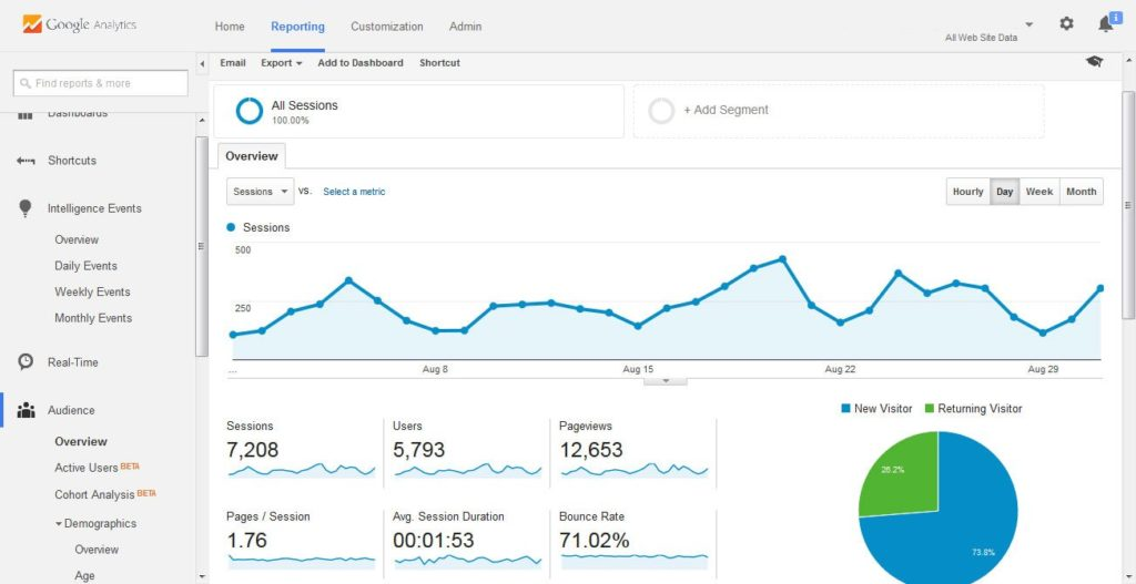 Google-Analytics-Audience-Overview