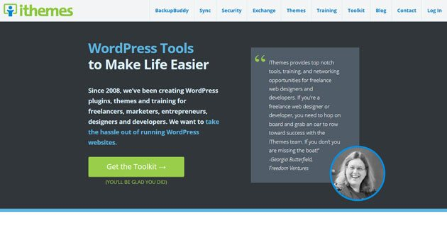 iThemes successful WordPress businesses